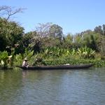 Bord du canal -- Canal de Pangalane