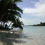 Madagascar -- Plages et cocotiers.<br /> Le paradis n'est pas fiscal, ni tres genereux avec les populations locales.<br /> Le long du Canal du Mozambique les cotes malgaches protegees par recifs coralliens offrent aux visiteurs.<br /> des eaux chaudes et des plages tropicales. Les plongeurs y decouvrent alors toute la richesse de l'ocean Indien.