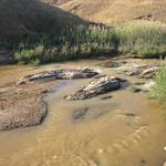Montée de eaux -- En quelques minutes la montée des eaux peut tout emporter. Philippe P.