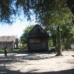 Habitat du Côtier -- Philippe P.
