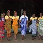 Danses malgaches -- Danses malgaches
