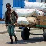 SOS Madagascar 2014 11 2508