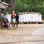 SOS Madagascar 2014 11 5068 -- Marchand de Charbon de bois